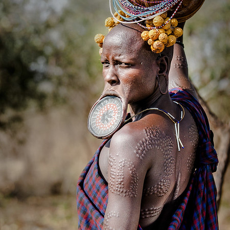 Mursi women are known for their lip plates and decorative scars. Every girl has her lip cut at the age of 15. A small clay plate inserted into the opening and replaced over time with a bigger one as the lip stretches. The larger the plate the more the woman is worth by the time she gets married.