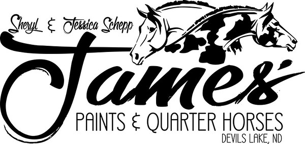 James' Paints & Quarter Horses Logo Design