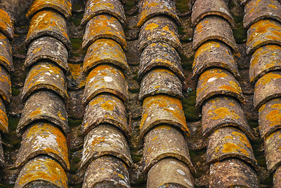 Spanish Roof Tiles II