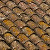 Spanish Roof Tiles I