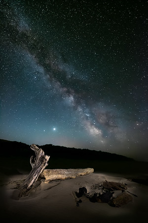Driftwood & Milky Way (#OR329)