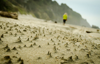 Beach Walk After The Storm
