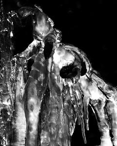 Ice Alien
