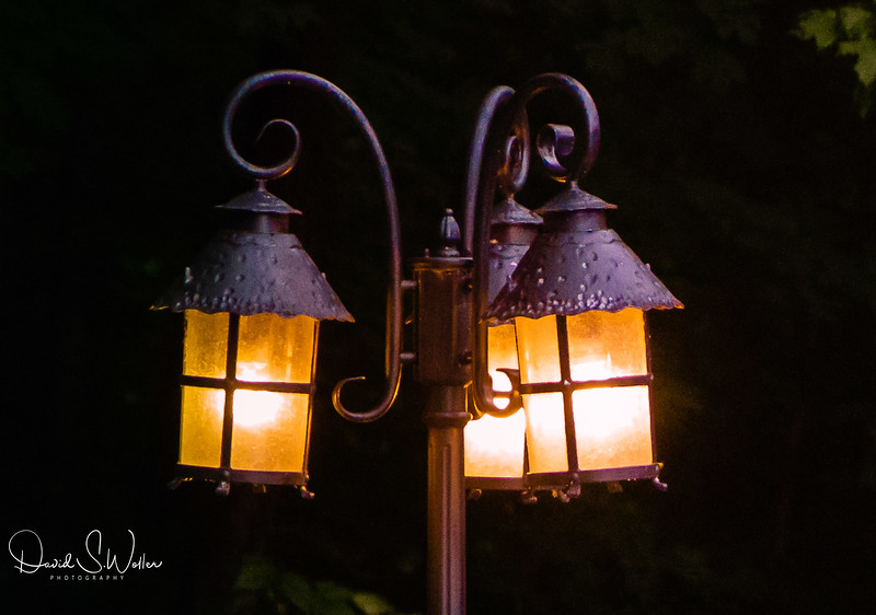 backyard lamp