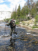 Action photo of a ranger crossing a stream in Yosemite