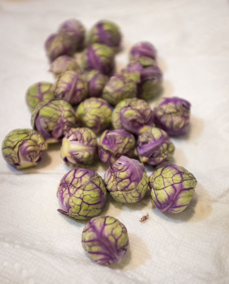 14 Jan: Brussel sprouts