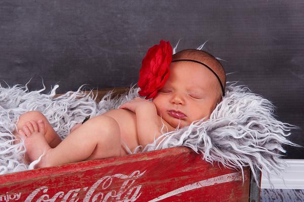 Libby newborn