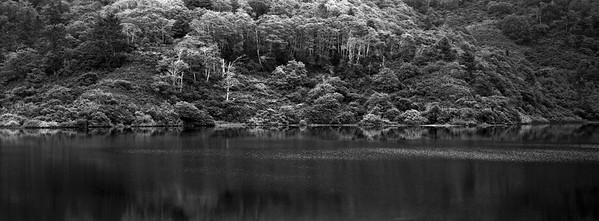 Freshwater Lagoon