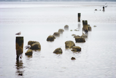 Arcata Pier