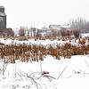 Village behind the pond  (Ukrainian Village, Alberta, Canada, 2011)