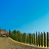 Road to Poggio (Agriturismo Poggio Covilli, SR2 - Via Cassia near Bagno Vignoni, Italy 2011)
