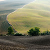Boundary (SP 146 between Pienza and San Quirico d'Orcia, Italy 2011)