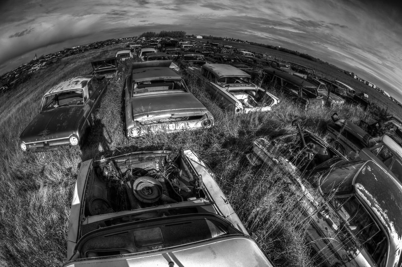 Disposable Planet (Aldon Auto Salvage, Lamont, Alberta, Canada 2012)