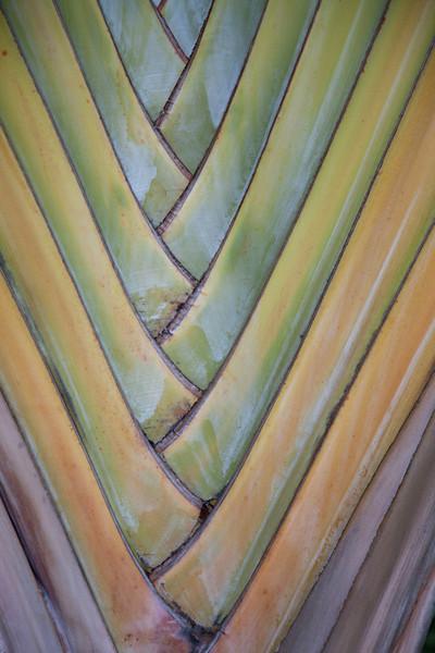 Temple - source image (Waikiki, Hawaii, USA 2012)
