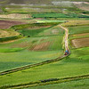 Working in the fields (Piano Grande di Castelluccio, Italy 2012)
