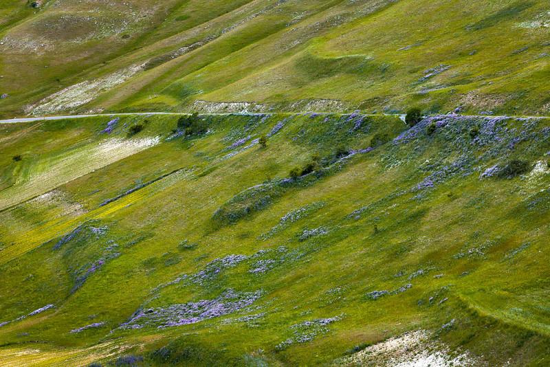 Road (Piano Grande di Castelluccio, Italy 2012)