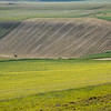 Edge (on the eastern approach from Pretare to Piano Grande di Castelluccio, Italy, 2012)