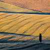 Morning patterns (Pienza, Italy 2012)