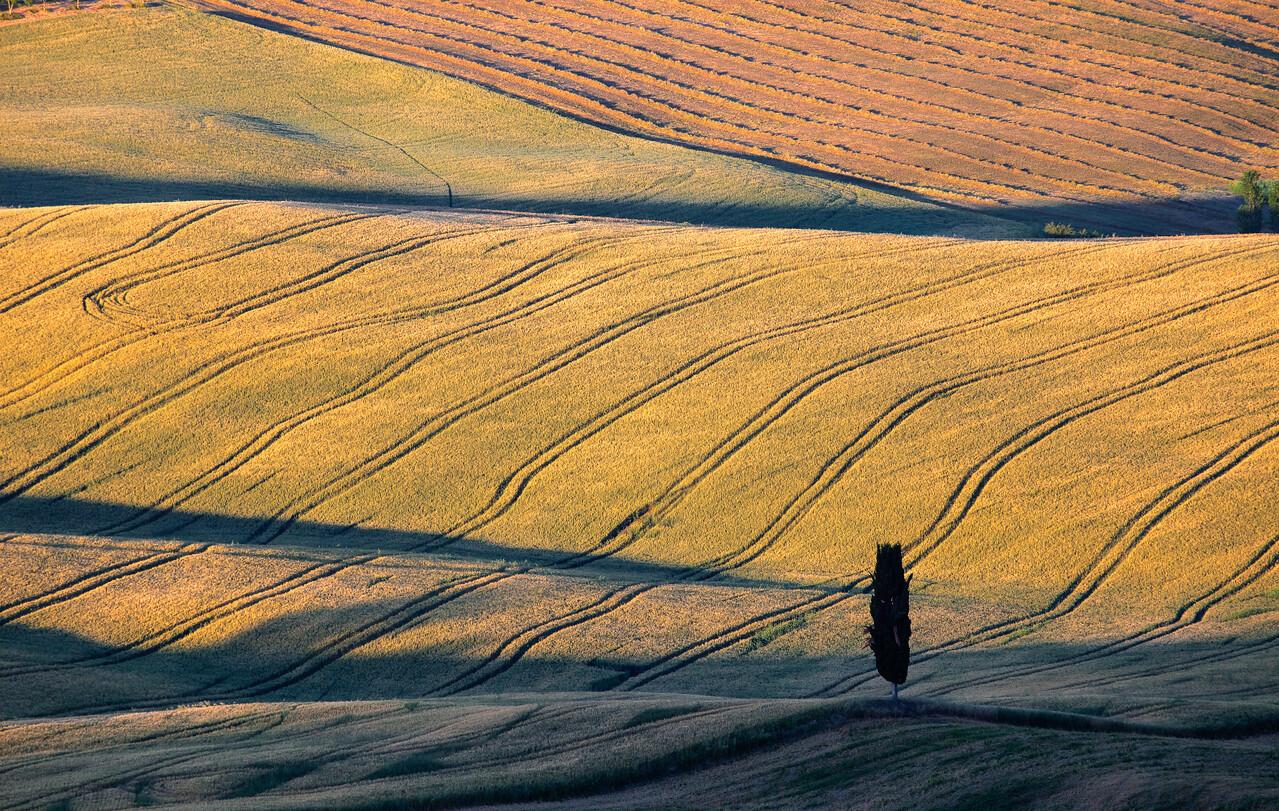 Morning patterns (Pienza, Italy 2012)