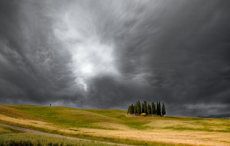 Approaching storm (Bosco dei cipressi, San Quirico d'Orcia, Italy 2012)