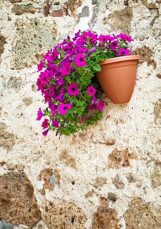 Wall flower pot (Sovana, Italy 2012)