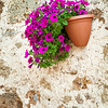 Wall flower pot (Sovana, Italy 2012)