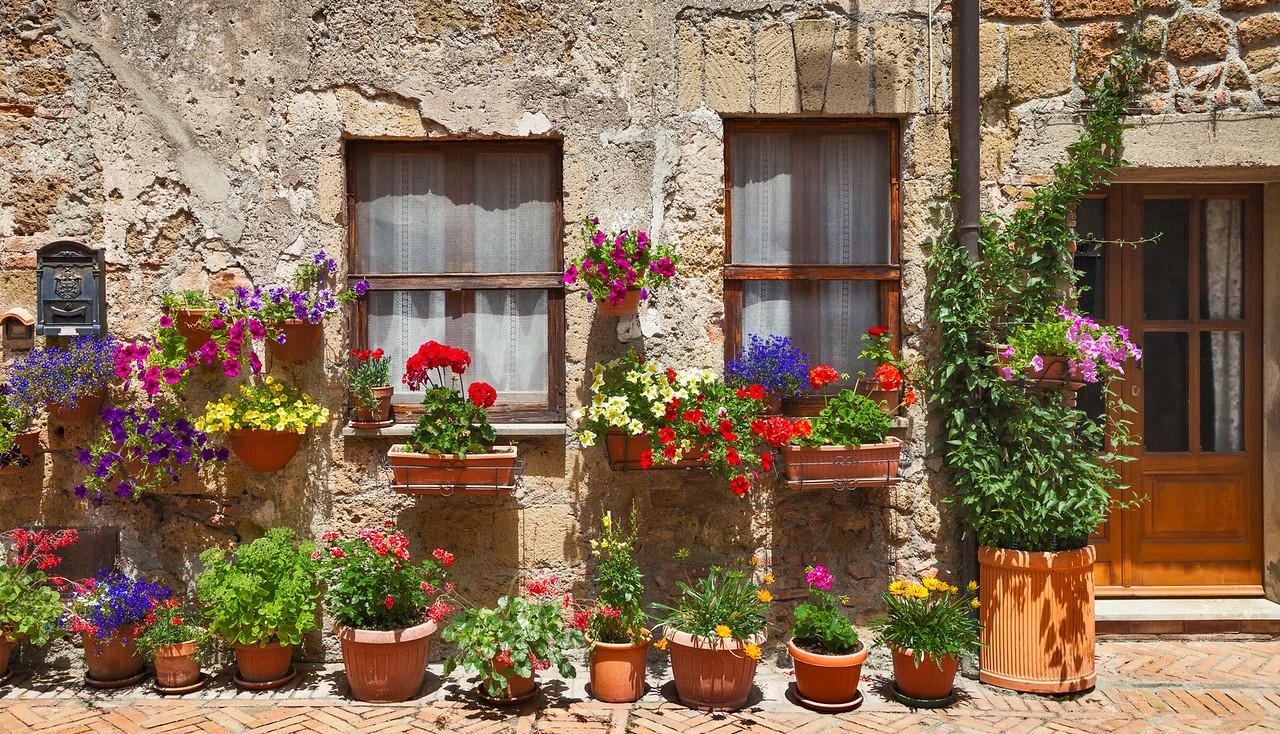 Garden patch (Sovana, Italy 2012)