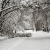 Snowed-in driveway
