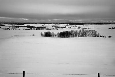 Foothills Winter gloom