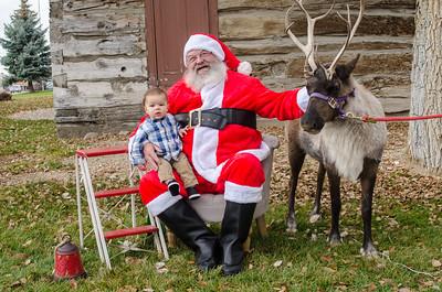 Reindeer2016-13