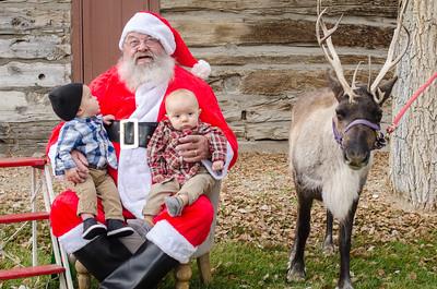 Reindeer2016-9