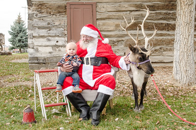 Reindeer2016-16