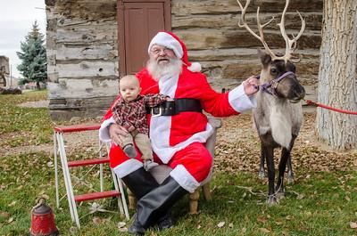 Reindeer2016-10