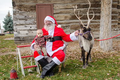 Reindeer2016-11