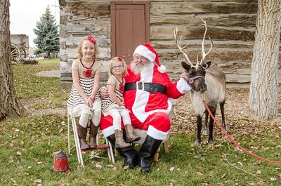 Reindeer2016-19