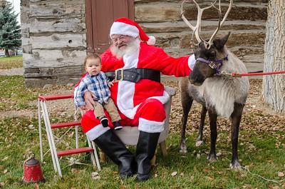 Reindeer2016-12