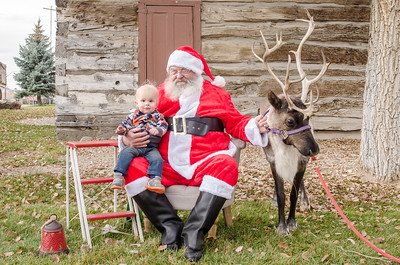 Reindeer2016-17