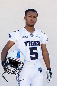 Tigers-13
