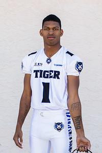 Tigers-12