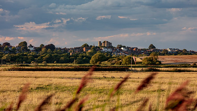 Lewes from Iford