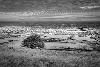 The view from Ditchling Beacon