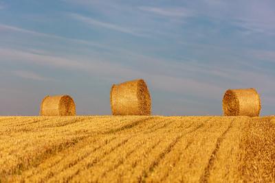 Hay bales near Firle