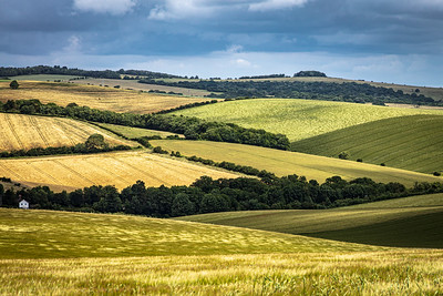 The South Downs near Falmer