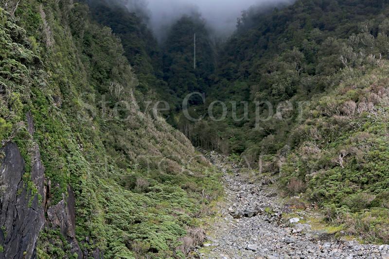 Moody Fiordland
