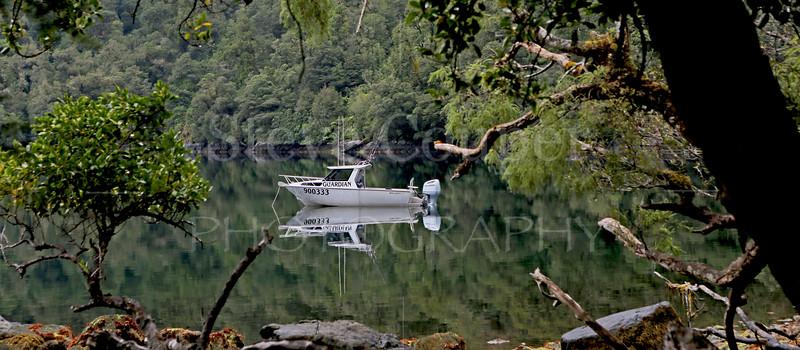 Quiet Fiordland