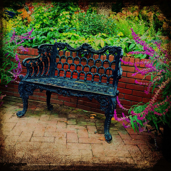 A lovely bench in one of the smithsonian parks in DC