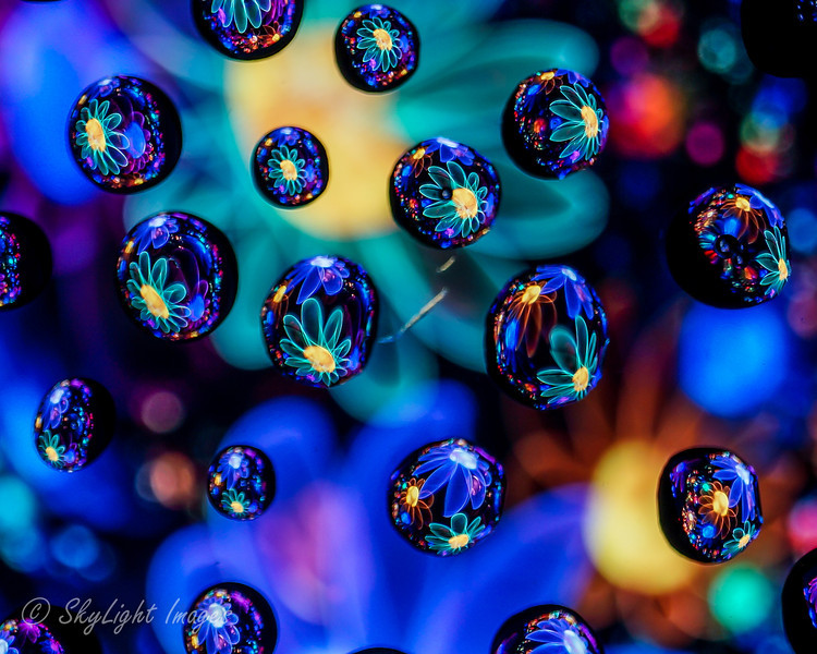Electric Bouquet 2 (water drops)