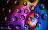 Segments of Color (water drops)