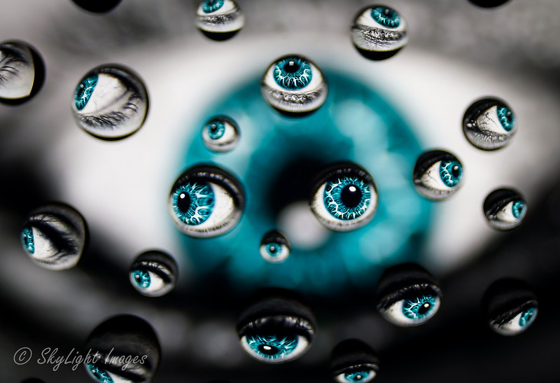 Old Blue Eyes (water drops)