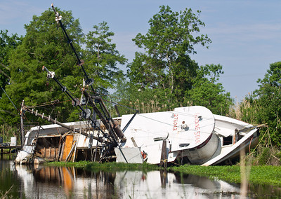 Victim of Katrina